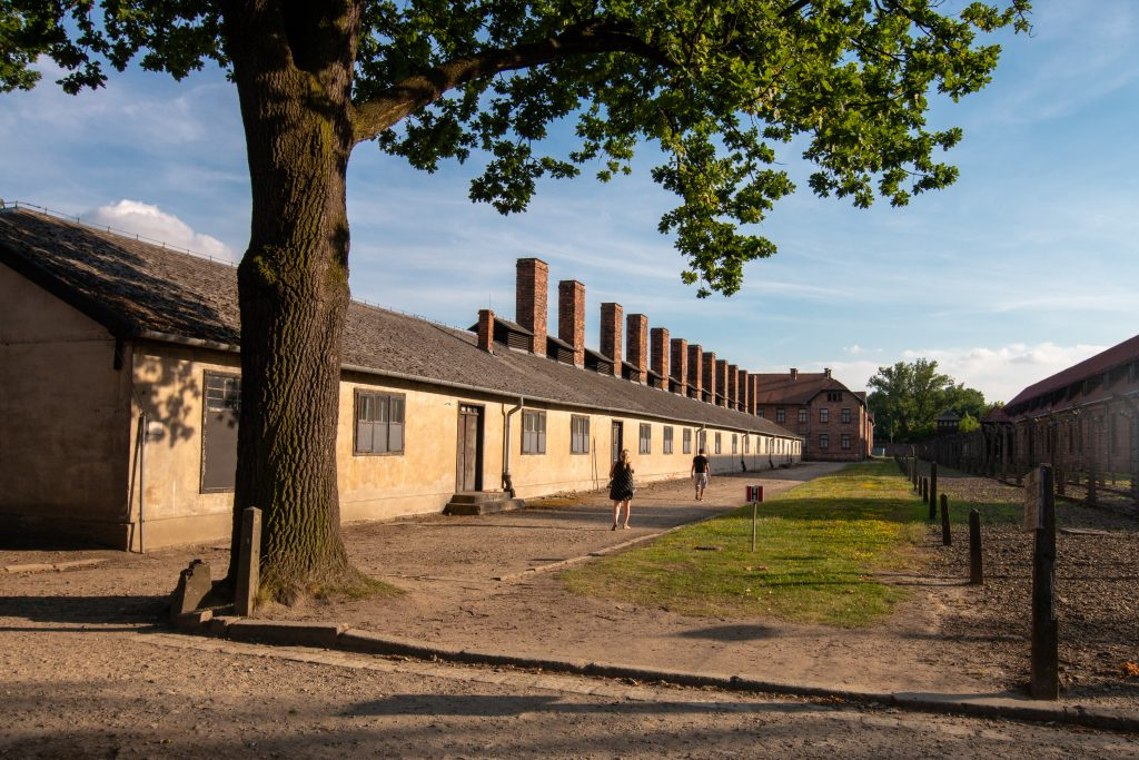 exterior of auschwitz concentration camp crematorium building with tree growing in the foreground