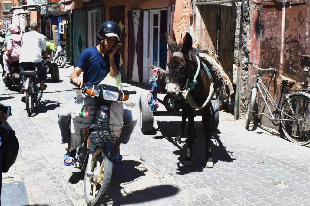 things to do in Marrakech, Morocco