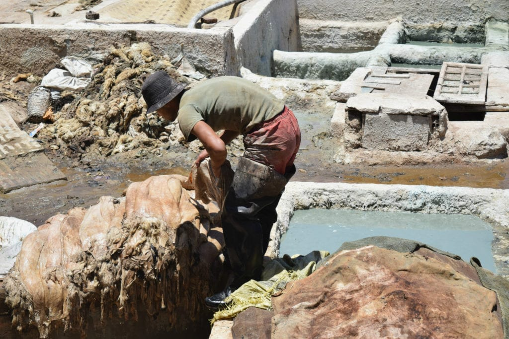 Marrakech Tannery Scam: Choosing Hides