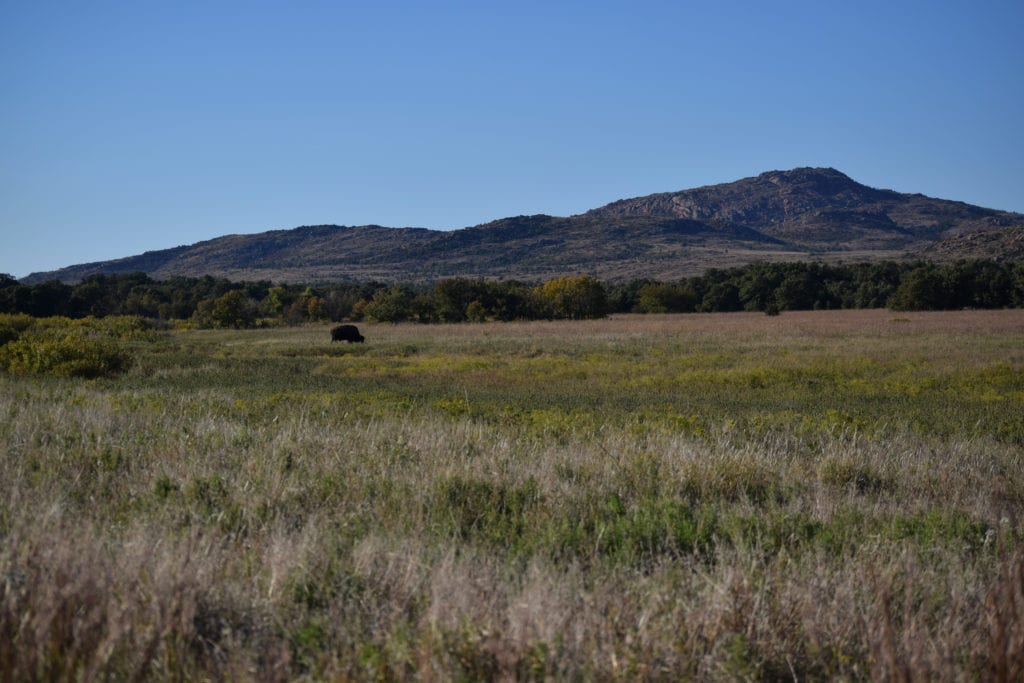 Wichita Mountains Wildlife Preserve, Oklahoma