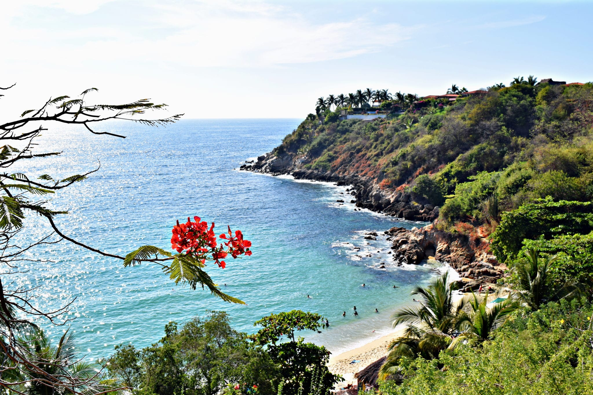 view of pacific ocean in puerto escondido mexico with red flower in the foreground. public beaches are a cheap way to make the most of your mexico travel budget