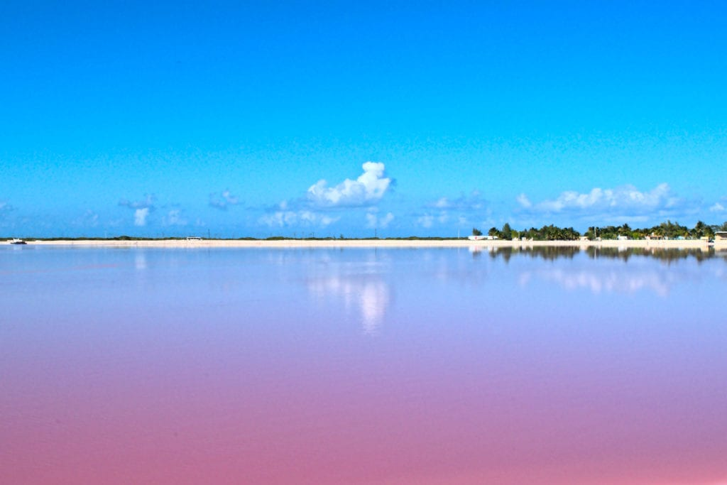 Pink Lakes of Las Coloradas, Pink Lakes of Mexico