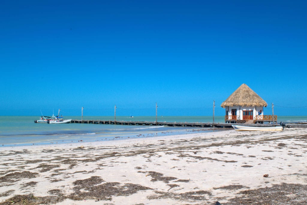 beach on isla holbox mexico with seaweed in the foreground