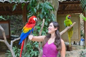 kate storm holding a scarlet macaw at macaw mountain, one of the best things to do in copan honduras