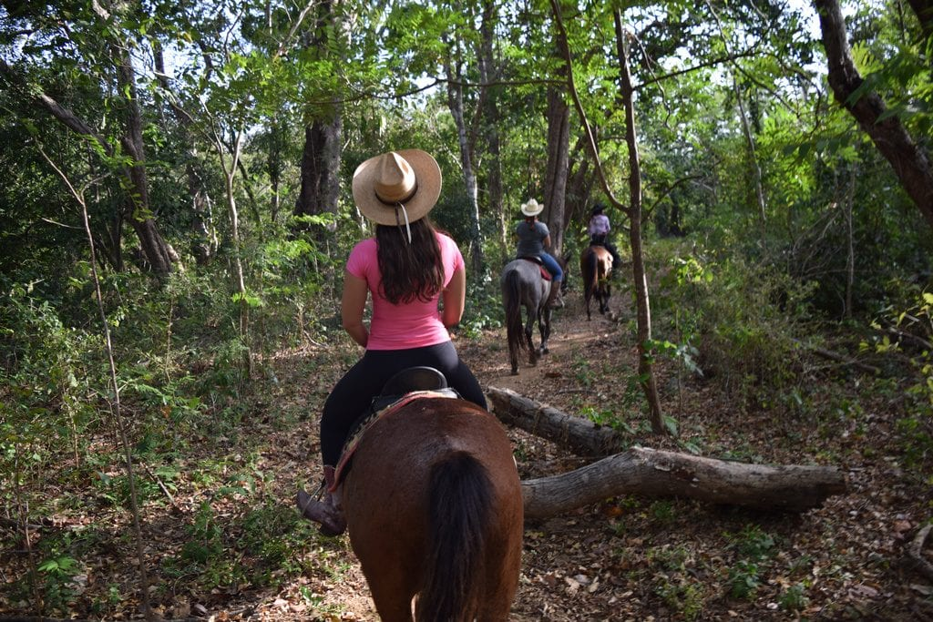 trail ride through a forest in nicaragua, kate storm in a pink shirt riding a horse in the center