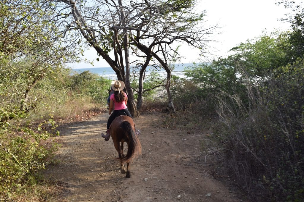 kate storm on a brown horse, Horseback Riding in Nicaragua with Rancho Chilamate
