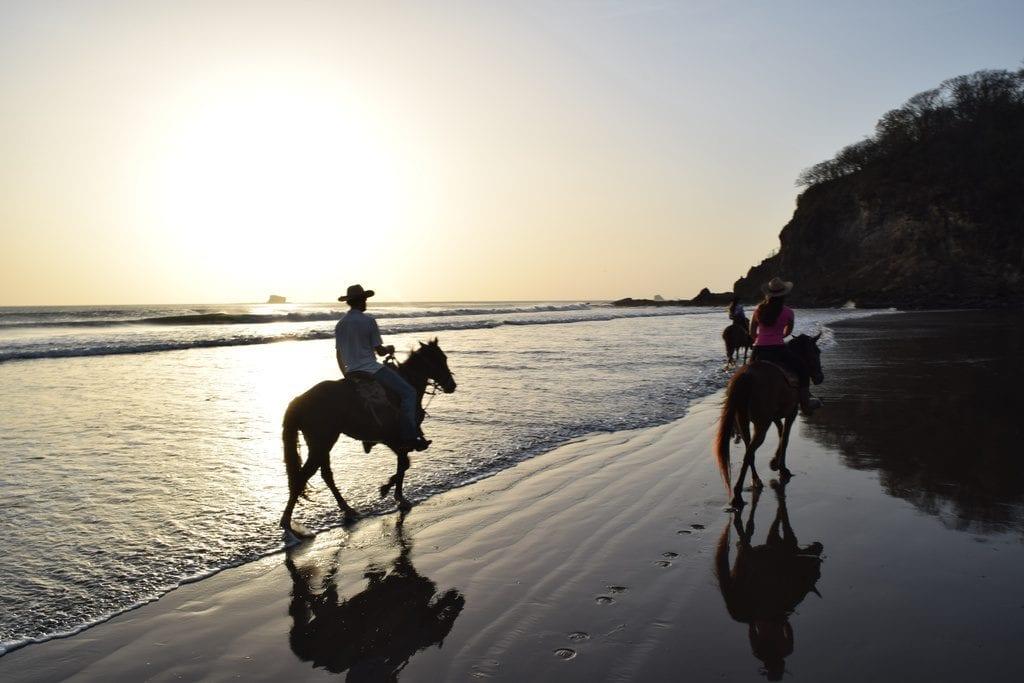 gropu of riders at sunset horseback riding on a beach