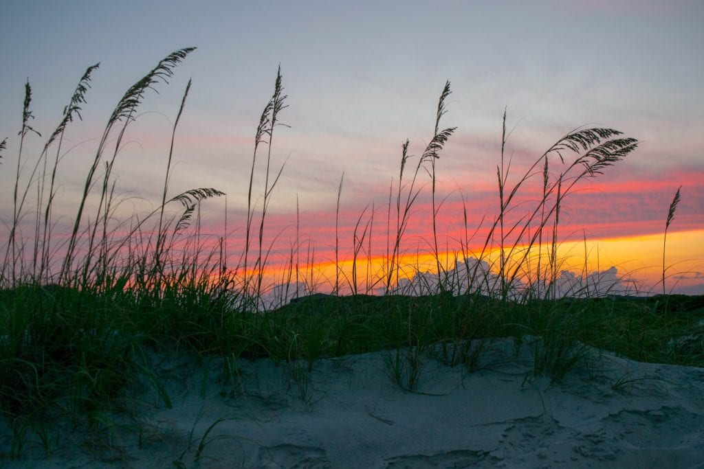 Sunset on a beach with sea grass in the foreground