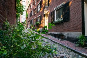 Acorn Street in Bostn MA as seen through a patch of ivy, one of the best things to do in Boston MA