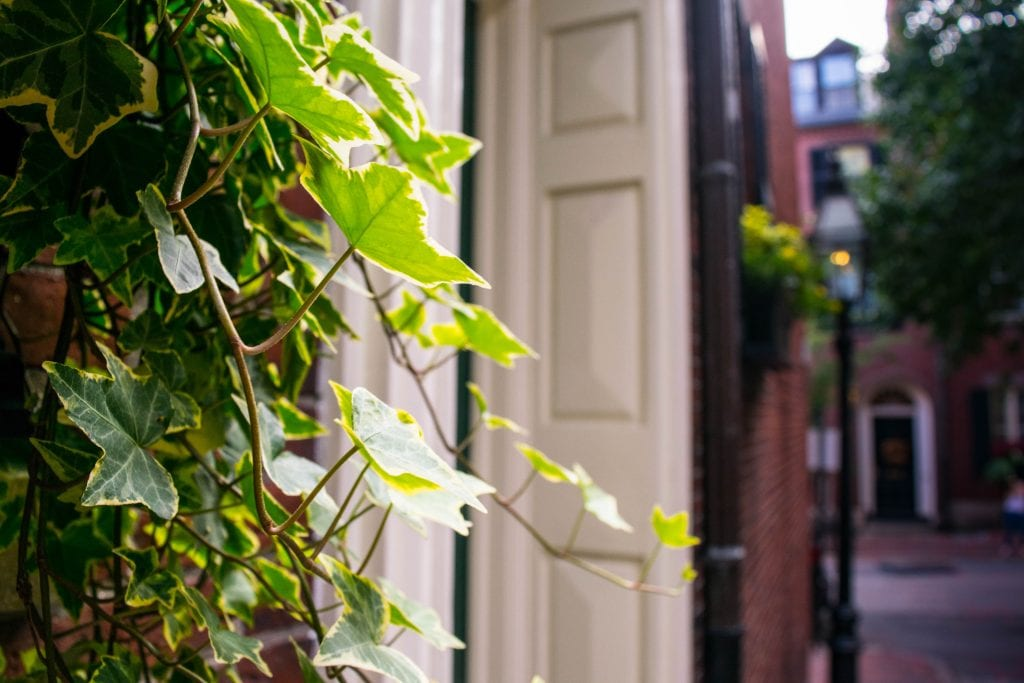 2 Days in Boston Itinerary: Acorn Street