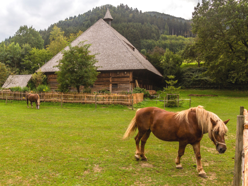horse standing in front of a wooden building at the german black forest open air museum, a fun offbeat european destination