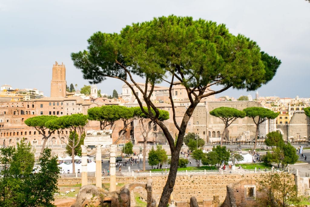 2 Days in Rome: Roman Views