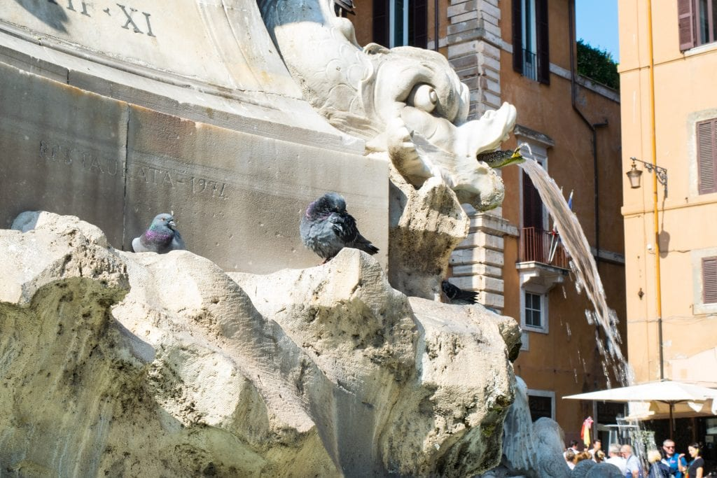 2 Days in Rome: Fountain