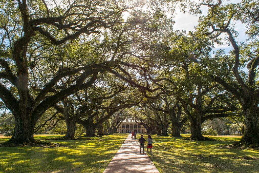 Famous oak-lined path leading to the Oak Alley Plantation near New Orleans Louisiana
