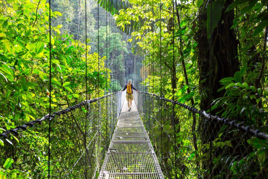 man walking on a swing bridge through the jungle in costa rica nicaragua