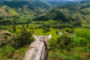 Things to Do in Salento Colombia: Horseback Riding