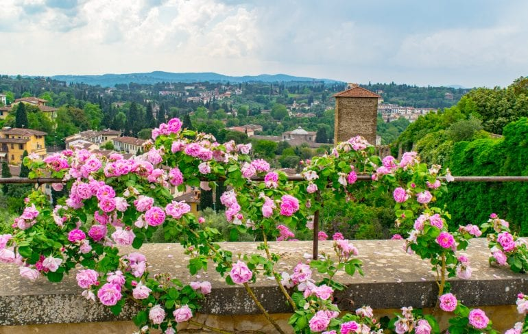 What to Do in Florence: Boboli Gardens View