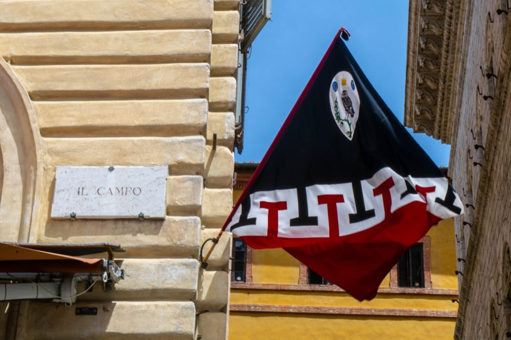 Florence to Siena Day Trip: Contrada Flag in Siena