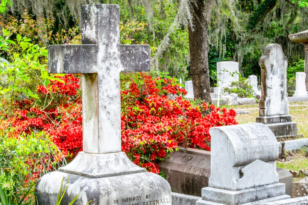 What to Do in Savannah: Bonaventure Cemetery