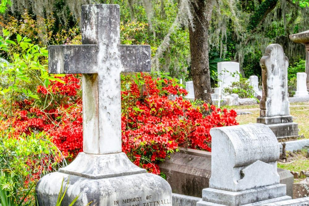 What to Do in Savannah: Bonaventure Cemetery