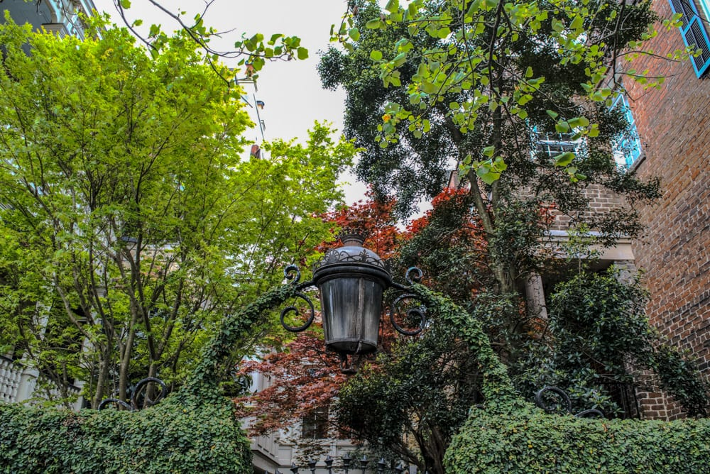 What to Do in Savannah: Tour House Museums