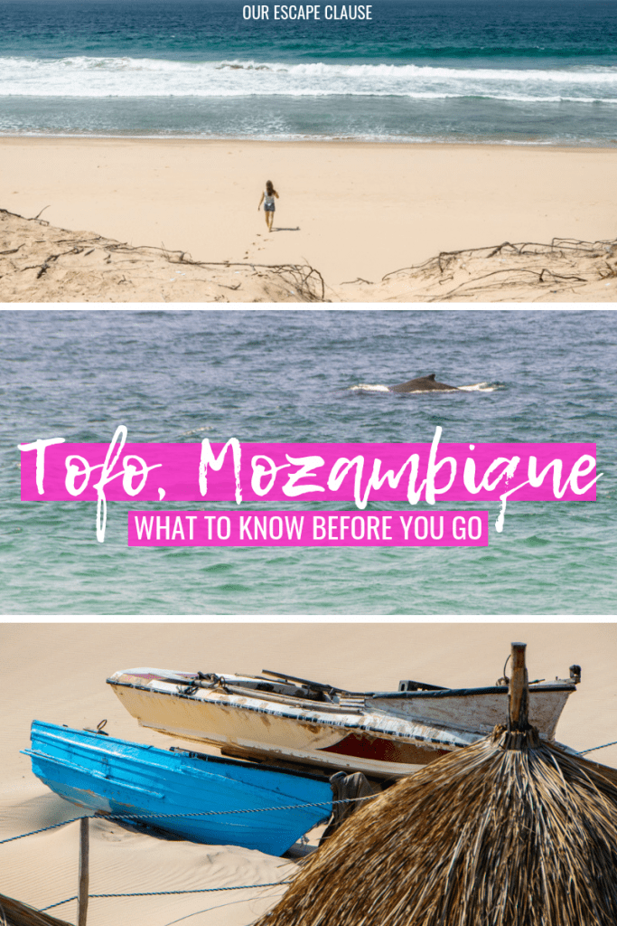 Tofo, Mozambique: Everything you need to know. #mozambique #beaches #travel #africa #tofo