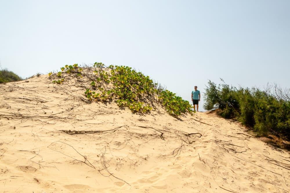 Tofo, Mozambique: Sand Dunes