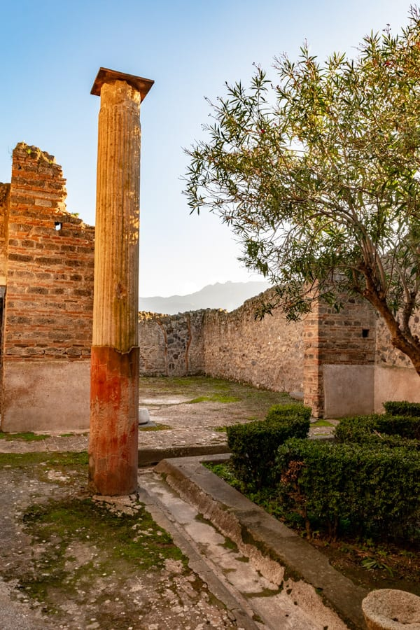 Visiting Pompeii: Column