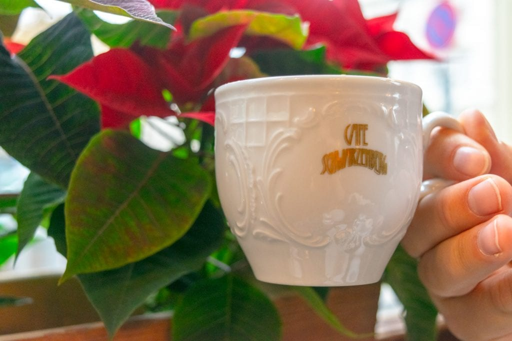 Viennese Hot Chocolate in a white mug being held up against a poinsetta