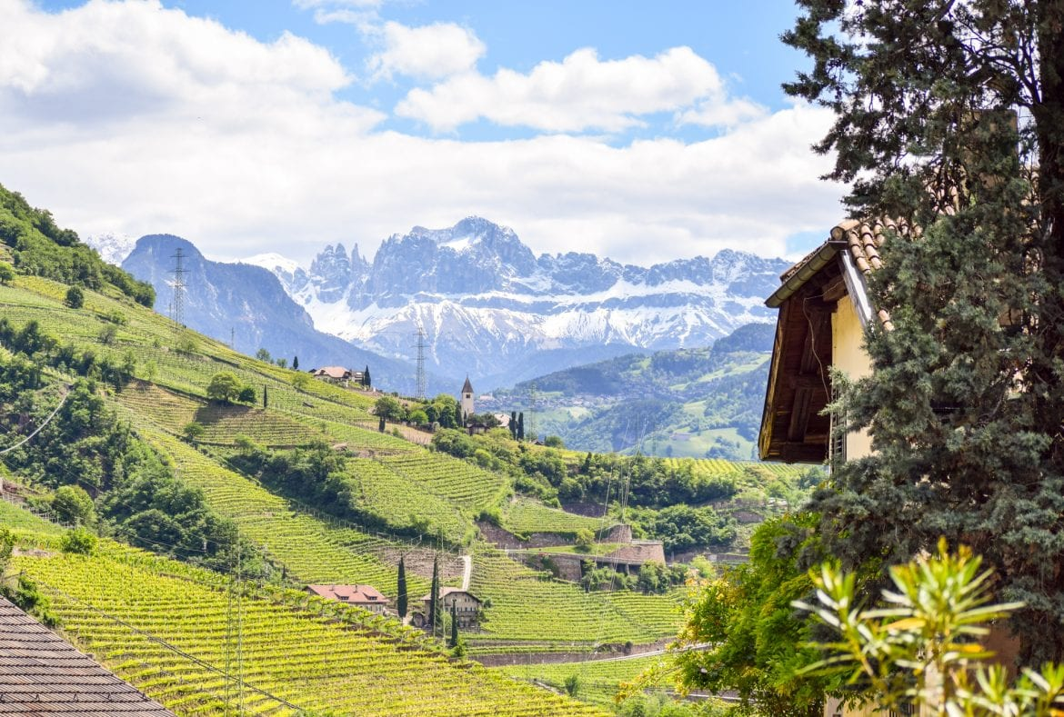 View near Bolzano Italy with vineyards in the foreground and the Italian Dolomites in the background, as included on a blog post about the best short travel quotes and travel captions