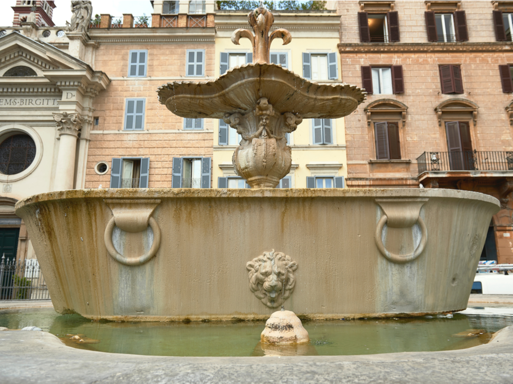 baths of carcalla is piazza farnese in rome italy