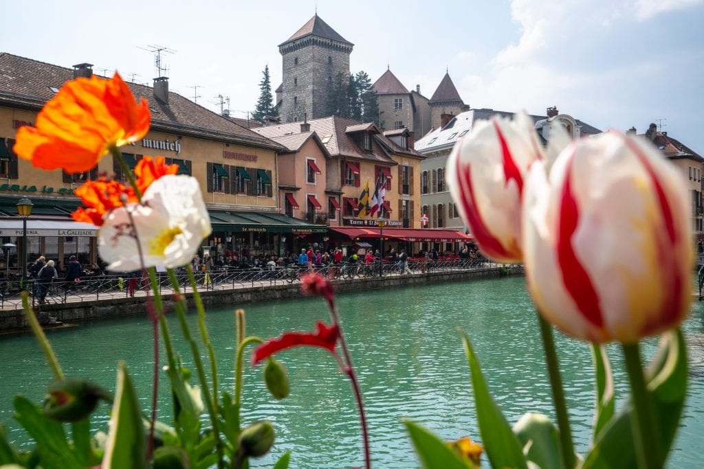 Chateau d'Annecy seen behind tulips, Best Things to Do in Annecy France