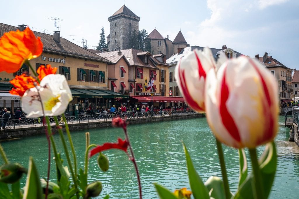 Chateau d'Annecy as seen from between blooming tulips over a canal. Annecy is one of the best small towns in France.