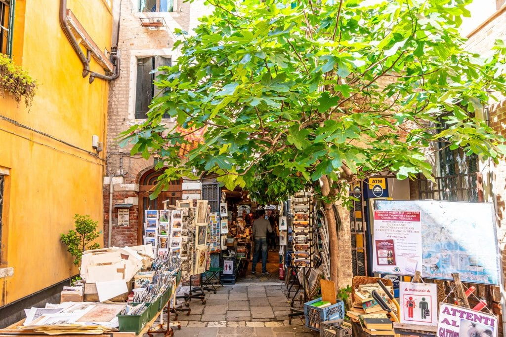 Entrance to Libreria Acqua Alta Bookstore Venice, with leafy tree over tables of books and postcards.