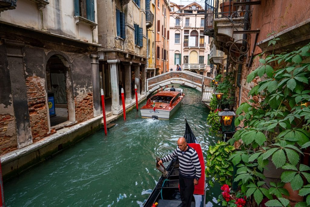 Photo of a canal bordered by a plant in Venice, with a gondolier padding toward the camera