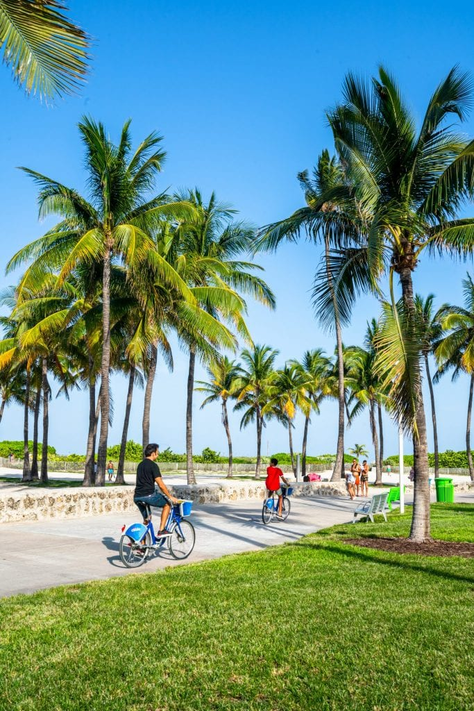 Family cycling through a paved path in Lummus Park. They're framed by green grass and palm trees.