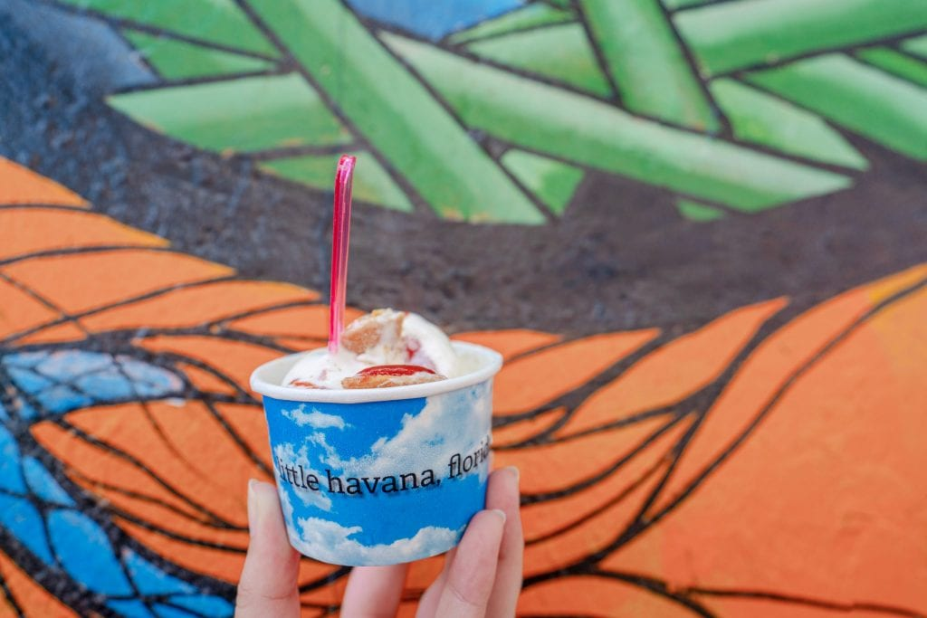 "Cup of ice cream held in front of orange and green street art in Little Havana. The ice cream cup is blue and white and says ""Little Havana"" in black lettering."