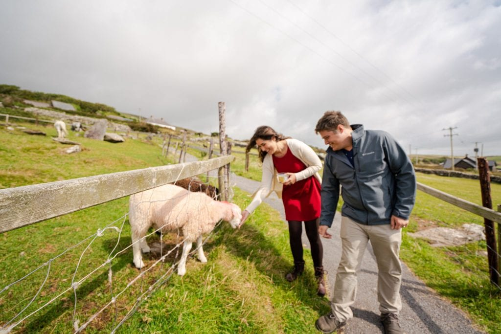 Kate Storm and Jeremy Storm feeding lambs along Slea Head Drive Ireland