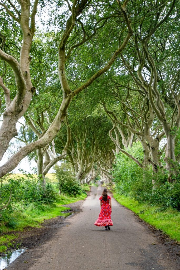 Kate Storm in a red dress facing away from the camera at the Dark Hedges, one of the most popular locations to see on a Northern Ireland road trip itinerary
