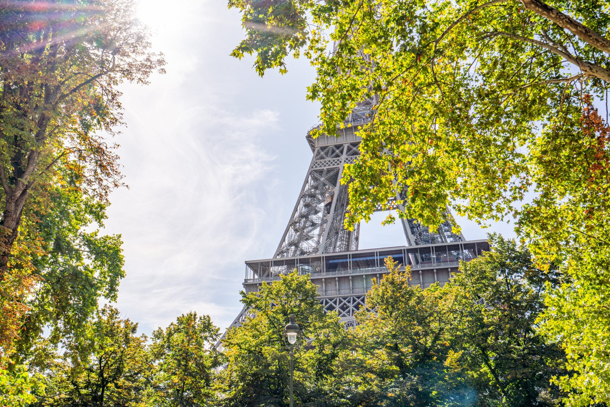 Photo of a piece of the Eiffel Tower sticking out from behind a tree with a sun flare on the left of the screen--you'll definitely see plenty of the Eiffel Tower during yoru weekend in Paris!