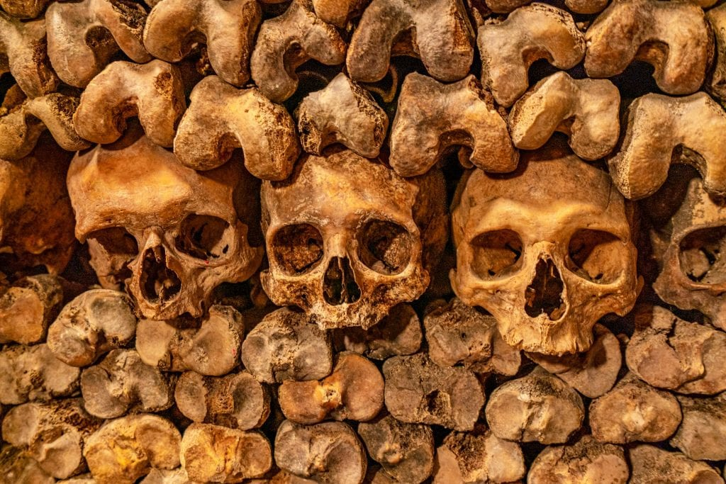 3 skulls in the Paris catacombs that are surrounding by other bones