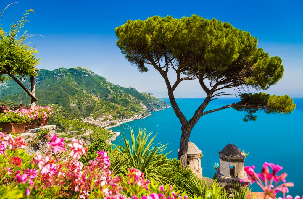 view of amalfi coast from ravello with pink flowers in the foreground and a tree on the right side of the photo