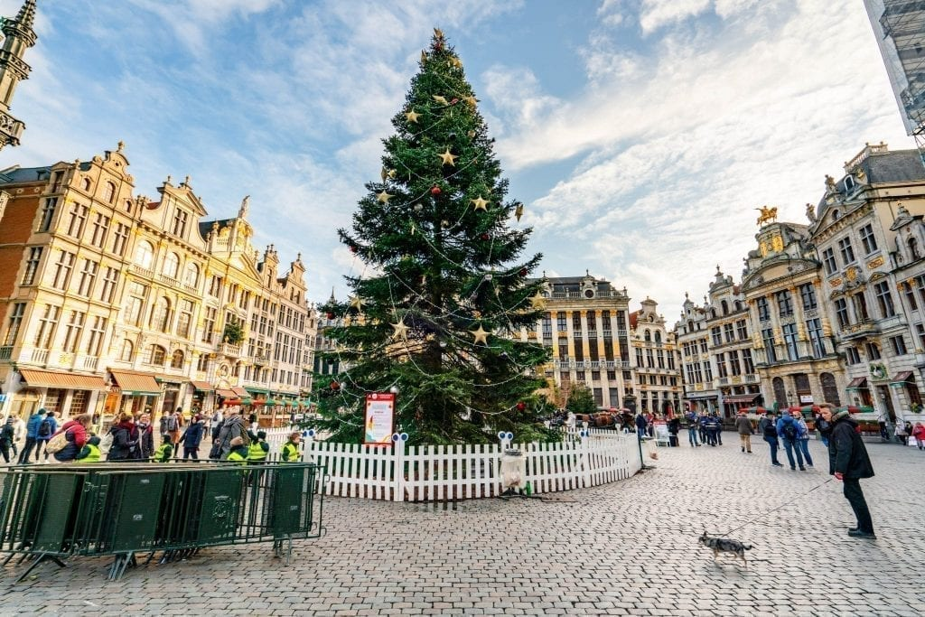 giant christmas tree in grand place brussels belgium december