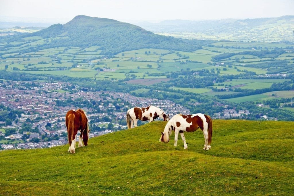Three horses grazing on a hill in Brecon Beacons National Park Wales, with rolling green hills and a small villages visible in the distance. Wales is one of the best underrrated road trips in Europe.