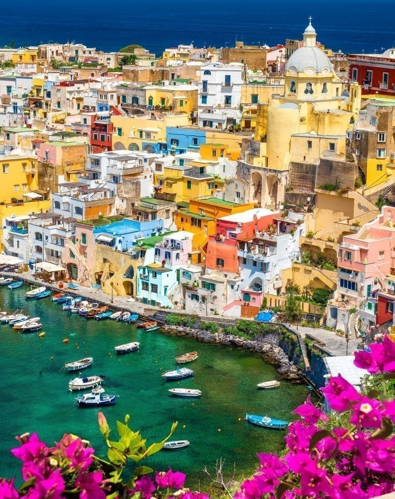 View of Procida Harbor and colorful town from above with pink flowers in the foreground. Procida is one of the best day trips from Sorrento Italy.