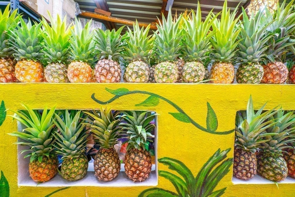 Wall of pineapples in bacalar mexico stacked up on several shelves--be sure to eat plenty of fresh fruit while in Mexico, but an important tip for traveling to Mexico is to be careful that it's freshly cut.