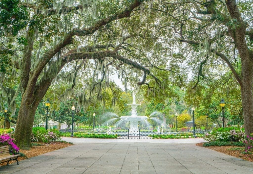Forsyth Park in Savannah with fountain visible in the distance. Forsyth Park is definitely one of the best places to visit in Savannah GA!