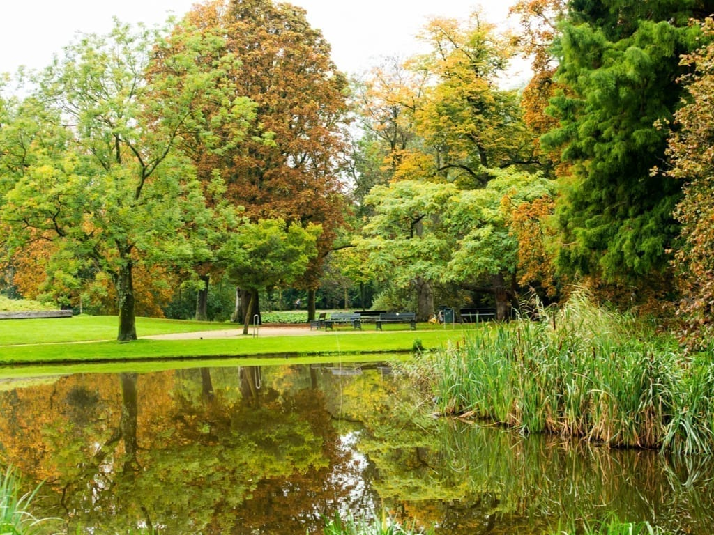 Vondelpark in Amsterdam with a pond in the foreground on the photo
