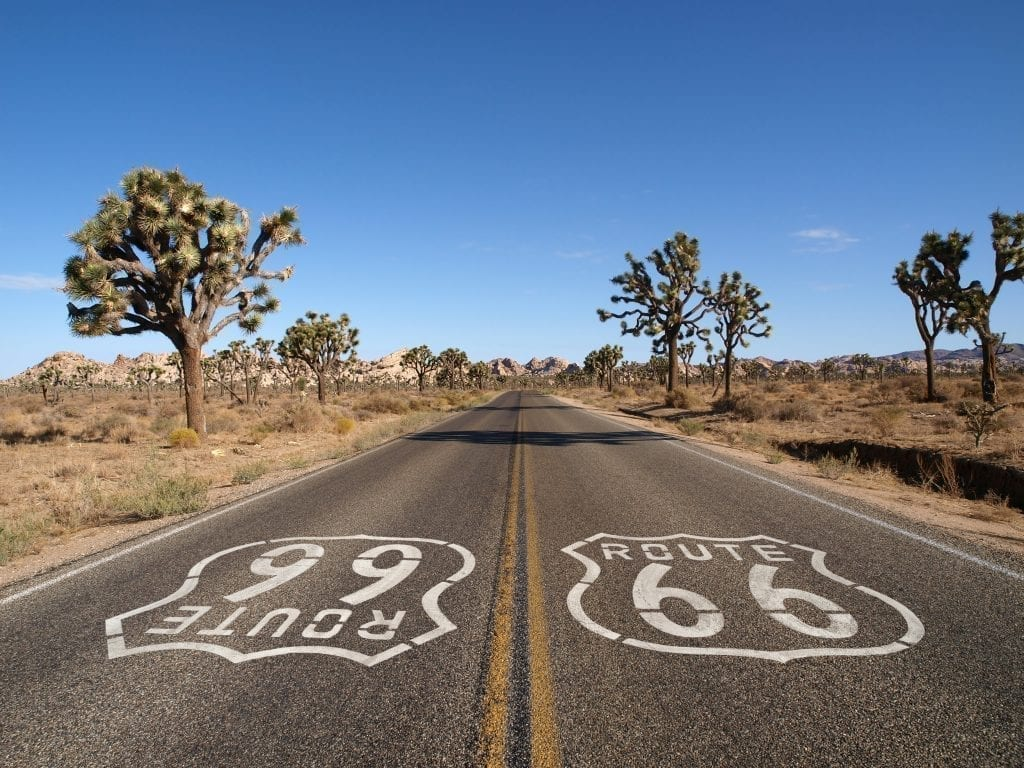Route 66 in California with Joshua trees on either side. Route 66 is one of the absolute best road trips in USA
