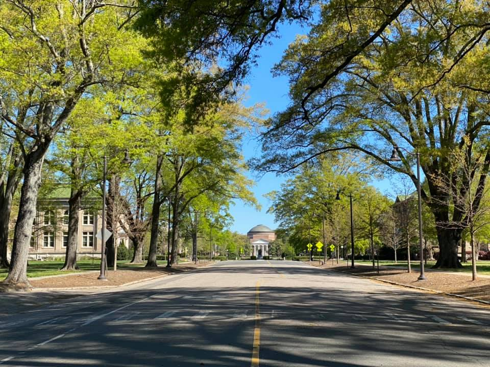 Tree lined streets in Durham NC on Duke University campus